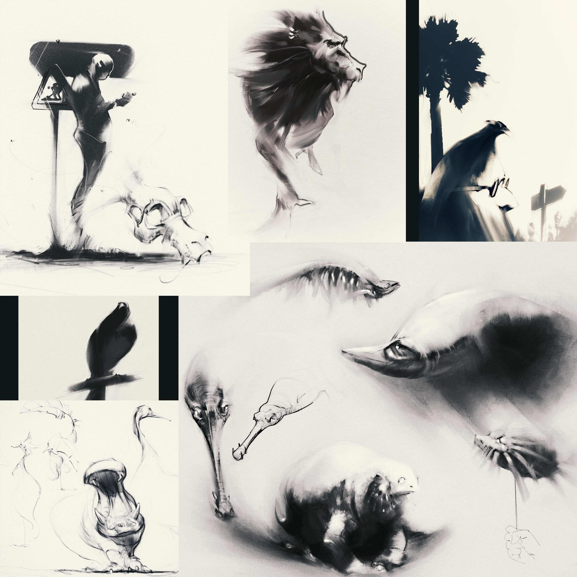 arash-razavi-snapshot1a