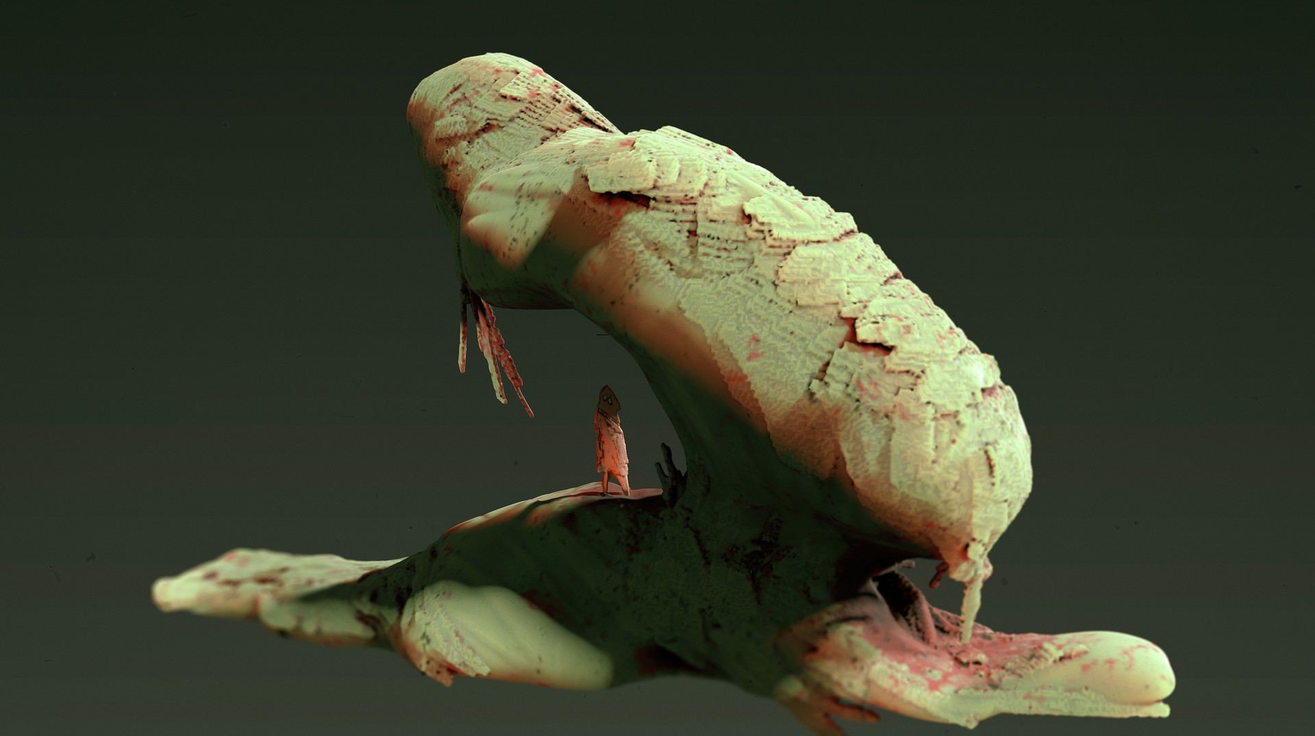 arash-razavi-2b