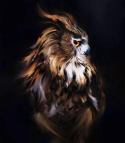 arash-razavi-tawny