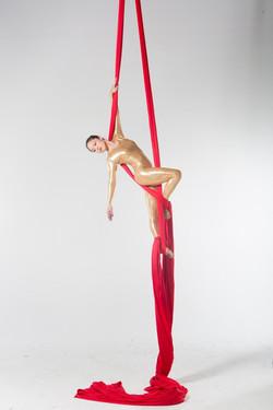 Aerial Silk Artist