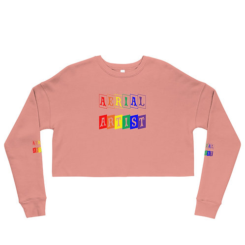 Aerial Artist Rainbow Block Crop Sweatshirt
