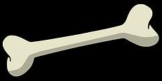 bone-157272_960_720.png