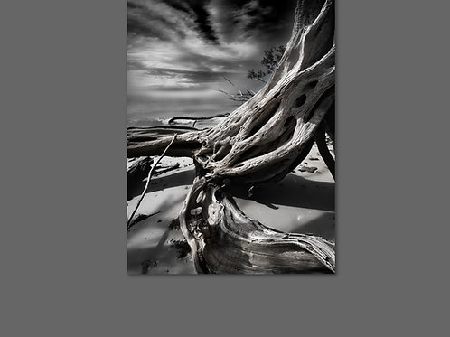 40X60 Framed Canvas Print