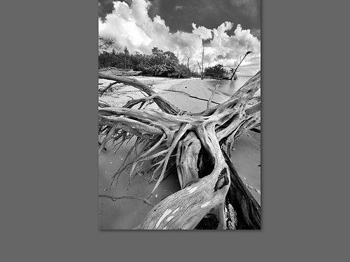 30X40 Framed Canvas Print