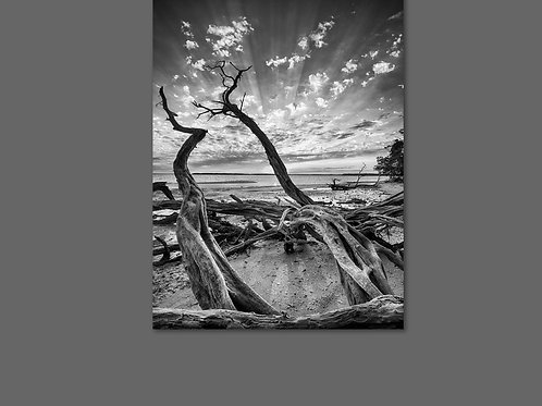 30X40 Framed Canvas Print