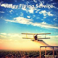 HaleyFlyingService.jpg