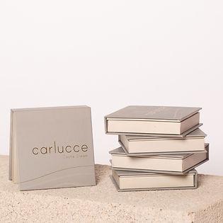 Carlucce_makeup_Cache_Cream_Vegan_non-to