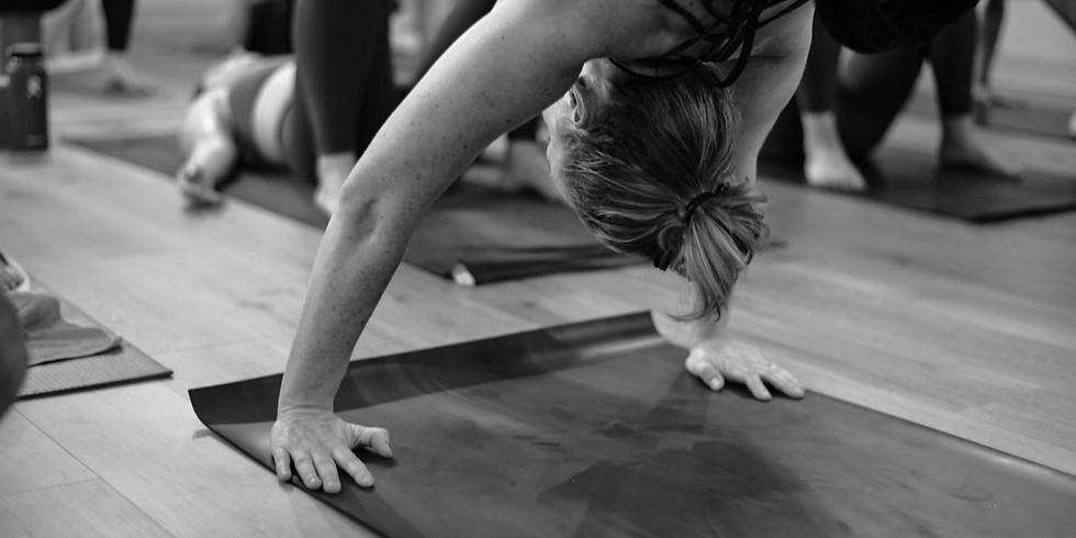 Yoga Foundations Workshop #2