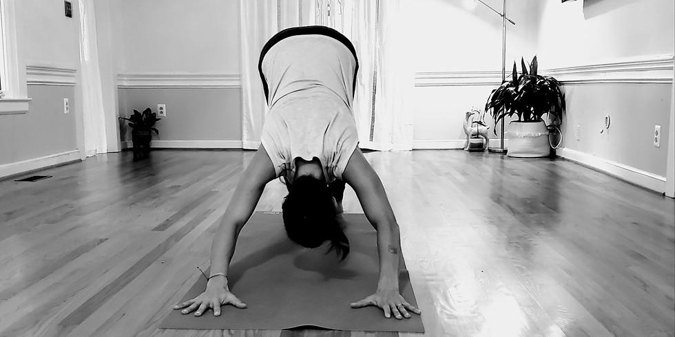 Yoga Foundations Workshop #1