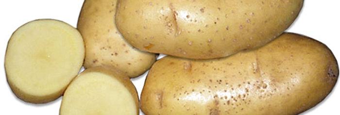 Картопля Ривьєра