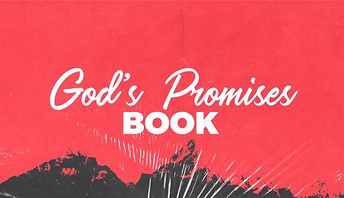 God's promises book.jpg