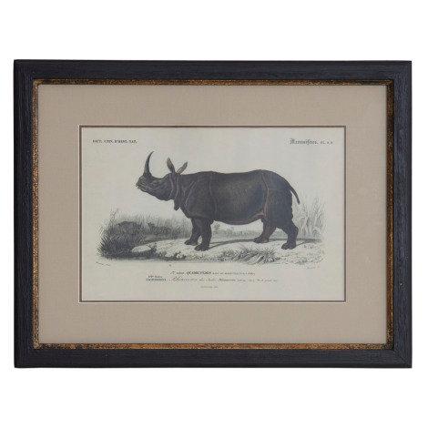 """Картина """"Носорог"""""""