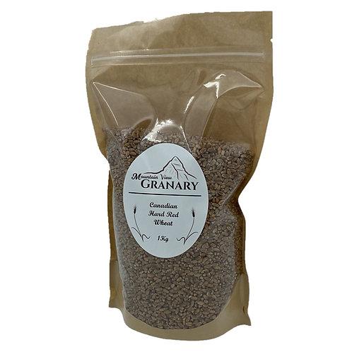 Organic Hard Red Wheat