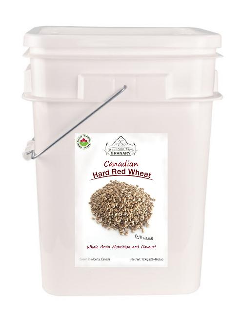 Organic CHR Wheat (12Kg Pail)