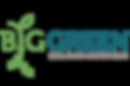 Big Green logo.png