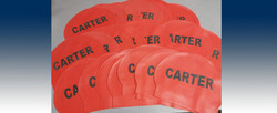 Carter Swimming Caps