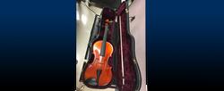 Double Bass Viola