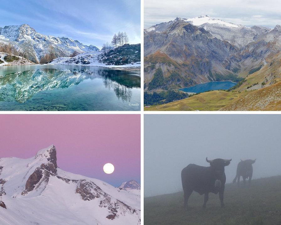 Découverte de la Nature à travers bisses et alpages