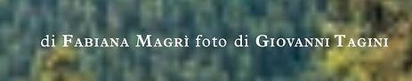 fabiana-min.jpg