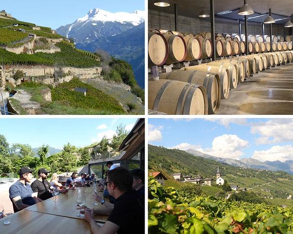 visite de la cave la Romaine et des vignes de Flanthey