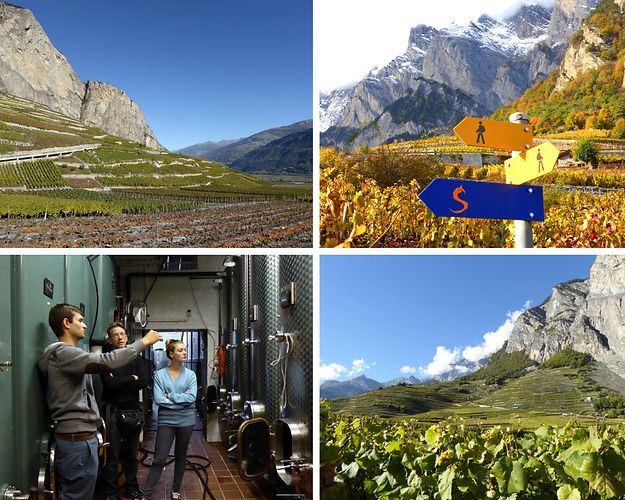 Excursion dans les vignobles de Chamoson, visite du patrimoine de St-Pierre de Clages.