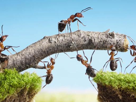 Warum du in der Gruppe deine persönliche Bestleistung erreichst!