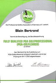 PGA Diploma 2002.jpg