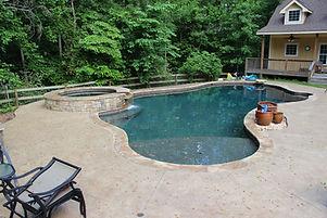 Freeform Pool and Spa.JPG