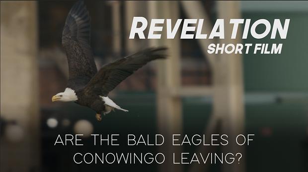 Revelation Thumbnail.png