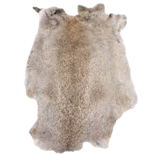 Rabbit skin, Rabbit pelt, gundog, Gun Dog training, dog training equipment.