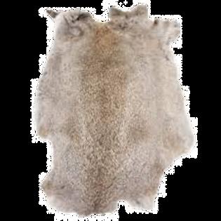 Rabbit Fur pelt