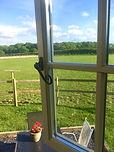 paddock view from window .jpeg