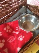 dog guest kit 2.jpg