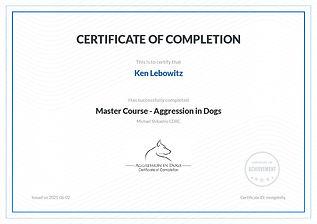 Ken Lebowitz - AggressionMasterCourse202