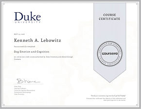 Dog Emotion and Cognition course certificate