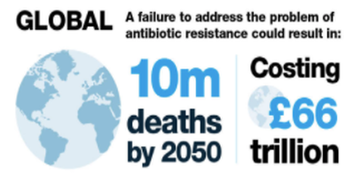 Antibiotics- one of the world's most talked about health...problems?