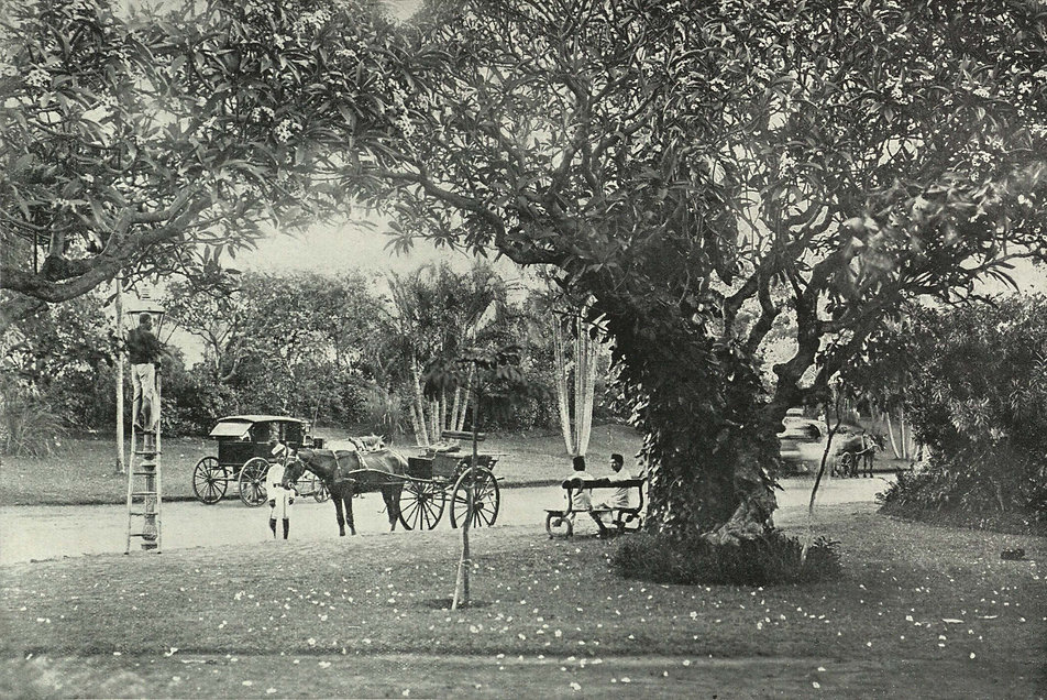 The_Hanging_Gardens,_Malabar_Hill_Inida