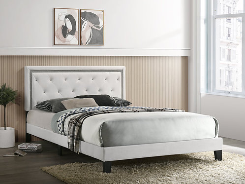 Passion White Platform Bed - Full, Queen, King