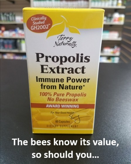10 Health Benefits of Propolis__1