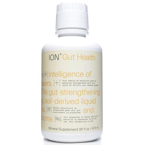 Ion* Gut Health