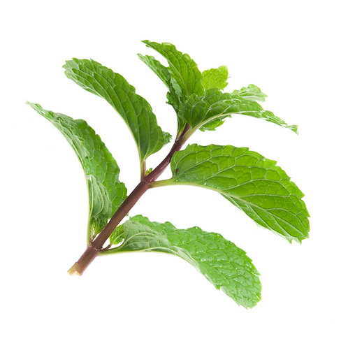 Indonesian Patchouli Essential Oil