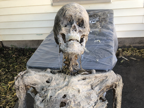 Fabricated Corpse