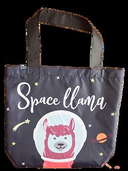 Space Llama-2.png