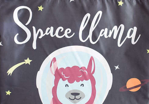 Space%2520Llama-2_edited_edited.jpg
