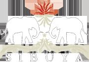 Sibuya-Game-Reserve logo.png