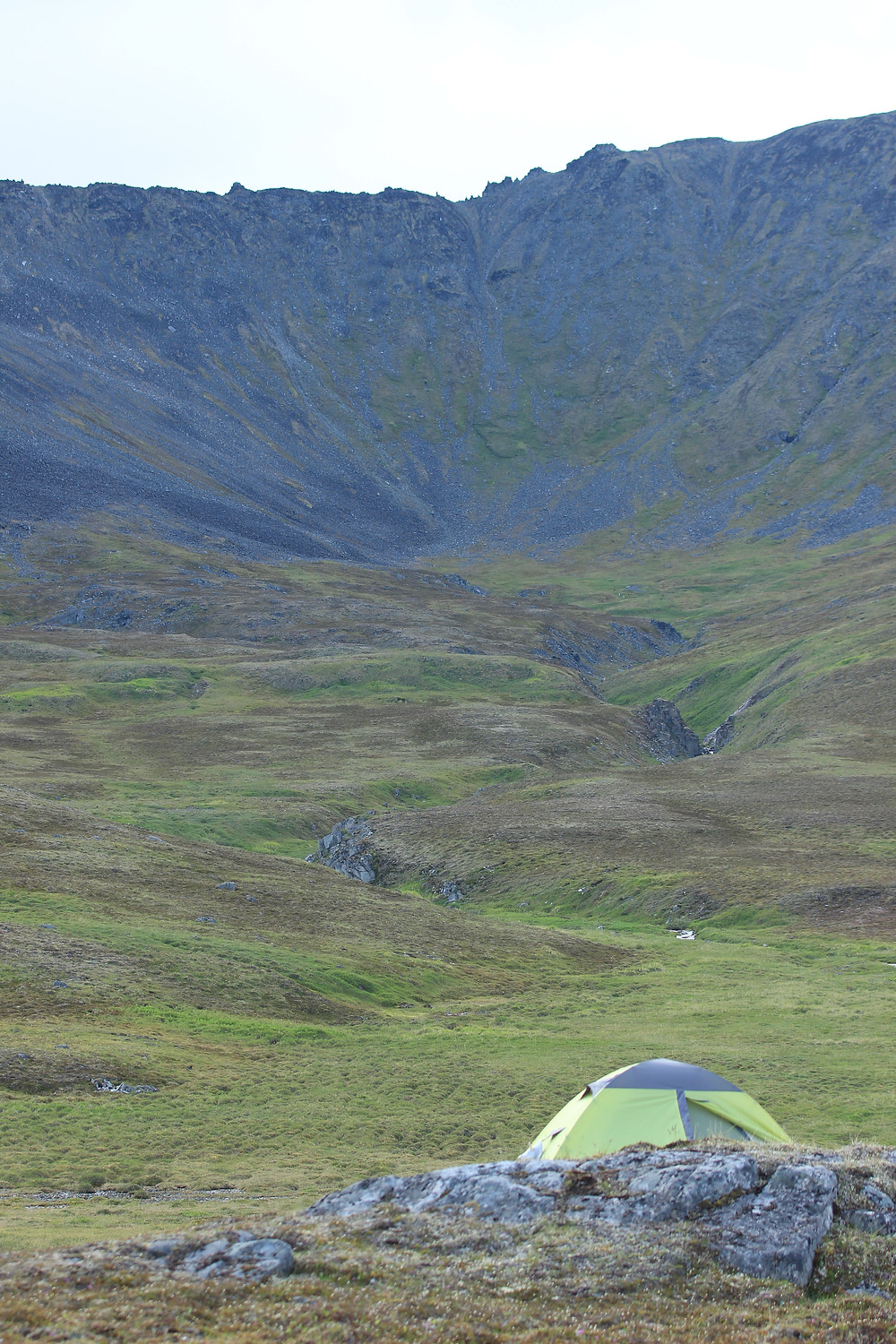 View from camp of Razor Back Ridge where we saw the first caribou