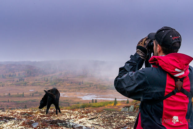 Caribou Lodge Alaska, Denali, Talkeetna, Alaska wilderness lodge, Denali, Talkeetna, Alaska wilderness lodge, Denali, Talkeetna, Alaska wilderness lodge, Denali, Talkeetna, Alaska wilderness lodge, denali, talkeetna, alaska wilderness lodge, hiking, eco tour, alaska, wilderness lodge, alaska wilderness lodge, denali, talkeetna, alaska wilderness lodge, denali, talkeetna, alaska, wilderness lodge, alaska cabins, talkeetna bed and breakfast, denali bed and breakfast, lodge, alaska cabins, talkeetna cabins, alaska lodge, alaska lodge, denali lodge, denali cabins, denali lodge, Alaska wilderness lodge, last frontier magazine