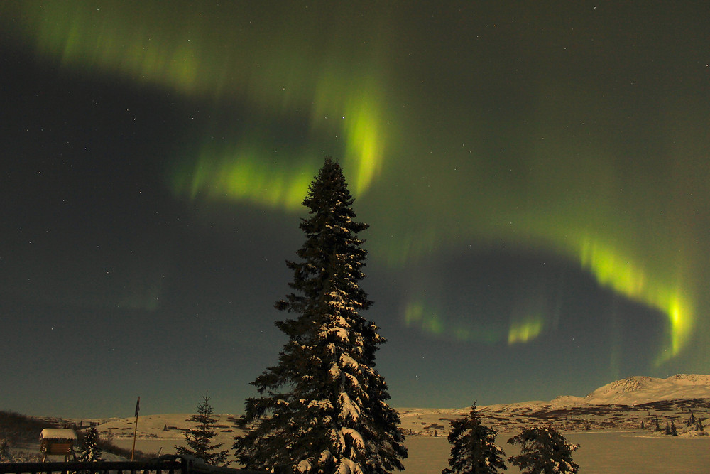 Northern lights from deck north.jpg