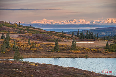 A majestic view of the Alaska mountain range during a hiking trip at Caribou Lodge Alaska. We specialize in hiking, camping, kayaking and wildlife viewing near Talkeetna and Denali Park.