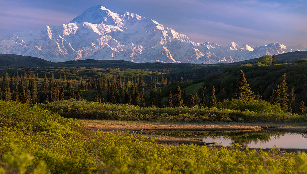 Photo of Denali taken at Caribou Lodge